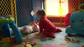 Twin babies resolve sharing conflict on their own - Video