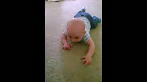 Boston Terrier Teaches Newborn Baby How To Crawl