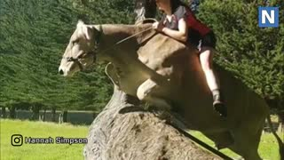 Riding A Dairy Cow Instead Of A Horse! - Video