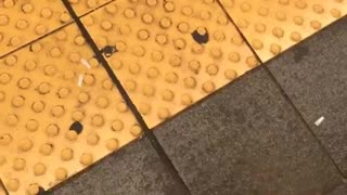 Clippin my nails waiting for the e train - Video