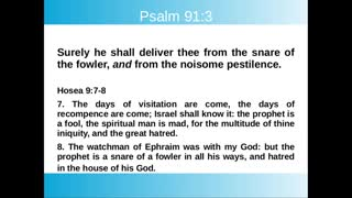 Psalm 91: Divine Protection from Coming Plagues and Disasters