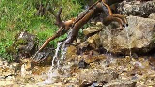 Beautiful water flowing nature music,Calm music,Mind relaxation