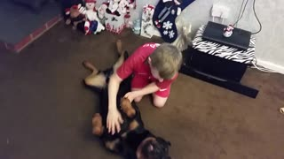 Gentle Rottweiler Absolutely Loves Getting Belly Rubs
