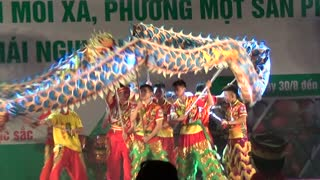 Amazing Vietnamese traditional dragon dance - Video