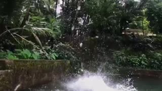 Boys enjoying jumping in water at home 2  - Video