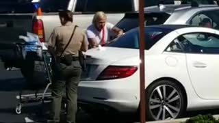 Woman Arrested After Leaving Her Dog in Car