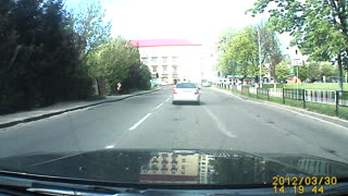 Traffic Stops for Mother Duck with Baby Ducklings