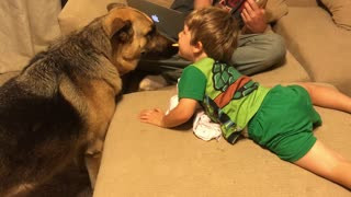 Little boy shares treat with German Shepherd