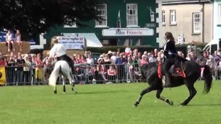 Hunt and Stunts – Jumping, Amazing Horse Freestyle - Video