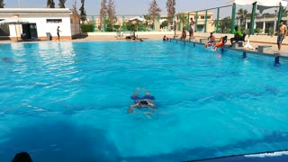 Back Back Swim In Pool By Expert Diver