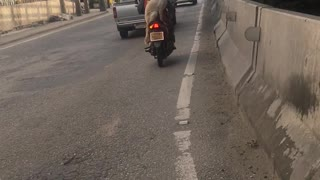 Another Dog on a Motorcycle - Video