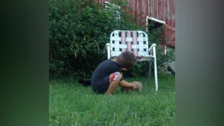Little Boy Tries To Wrangle Adorable Tiny Kittens - Video