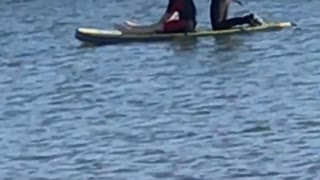Guy in black wetsuit on surfboard with girl - Video