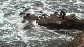 You good two men on rocks at beach