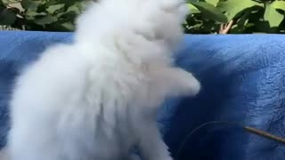 Playing with Caty OutDoors