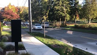 Spilled Steel Balls Cause Chaos on Seattle Hill