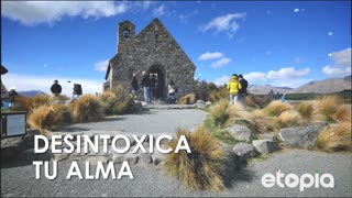 Desintoxica tu alma - Video