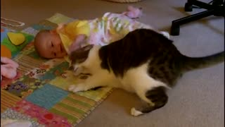 Mom Puts Her Baby On the Carpet. Cat's Reaction? Totally Awesome! - Video