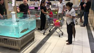 Fish Jumps into Cart - Video