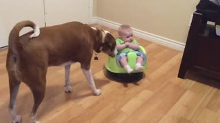 Cute Baby Rides A Robot Vacuum Cleaner - Video