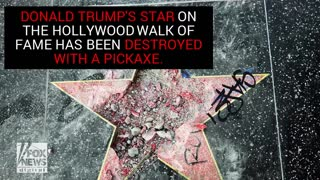 Hollywood City Council To Vote On Removing Trump's Star - Video