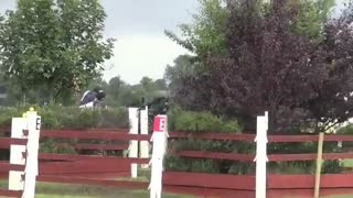 4 horses move with such precision, it seem like they're reading each others' minds - Video