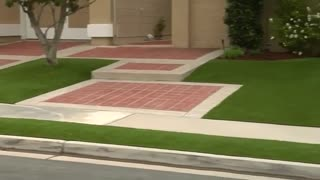 Californians give drought-ridden brown lawns a Hollywood makeover - Video