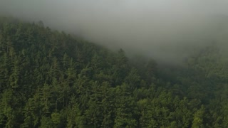 Mountain Fog (Free to Use HD Stock Video Footage)
