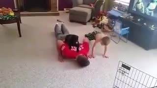 Dog Helps Her Dad With His Work-Out Routine - Video