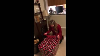 Wife's emotional reaction after getting surprise puppy for Christmas - Video