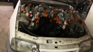 Duck Army 2.0 - The Army Said No To A Bigger Engine - Video