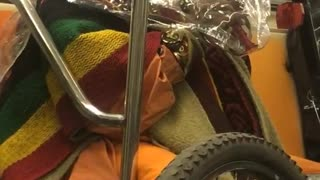"""Woman with plastic bag and blanket over her head plays """"007"""" song on flute on subway"""