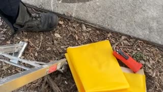 Fire Department Rescue Kitten From Storm Water Drain