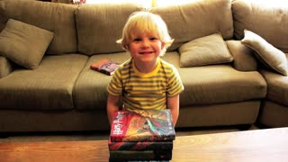 Dad raps the plot of the first Harry Potter book to his son - Video