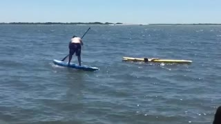 Collab copyright protection - blue shorts blue paddle board fail - Video