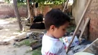 Small Little boy Playing with Pots  - Video