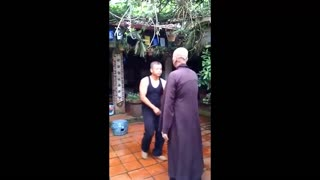 Ip man of Vietnames - Video