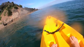 Kayaker's Up-Close Encounter with Pod of Orca