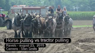 Horse Pulling vs Tractor Pulling - Video
