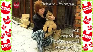 Woman Lives With Lions - Video