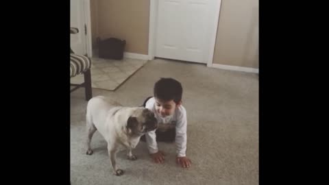 Pug Destroys Little Kid In Butt Spinning Contest