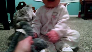 Playful puppy makes adorable baby giggle - Video