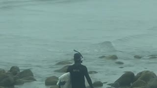 Man scuba gear with surf board walking on rocks - Video