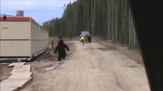 Guy In Bear Costume Scares Bejeezus Out Of Construction Worker