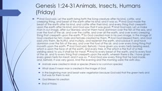 Journey Through the Bible Genesis Chapter 1