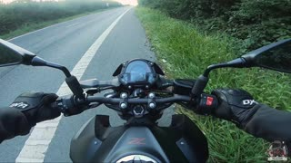 Heroic biker rescues kitty from road
