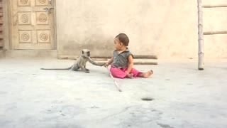 Monkey playing with child  - Video