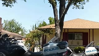 Police Brutality or Necessary Force? - Video