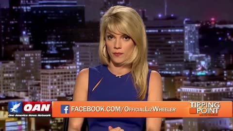 Liz Wheeler points out BLM's contradictions