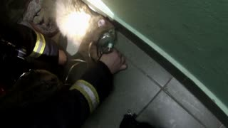 Firefighters Rescue A Kitten - Video